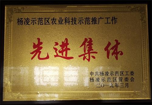 杨凌示范区农业科技示范推广工作先进集体