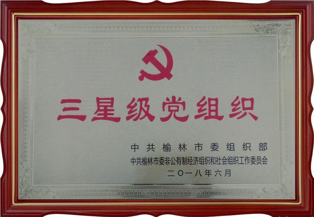 三星级党组织